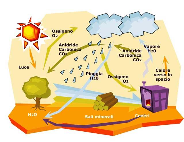 biomasse cogenerazione-fluidotecnica-grandi-impanti tecnologici condizionamento idraulica antincendio pannelli radianti gas domotica elettrici-matera-basilicata